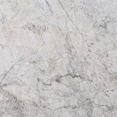 Antarctic Grey Thumbnail